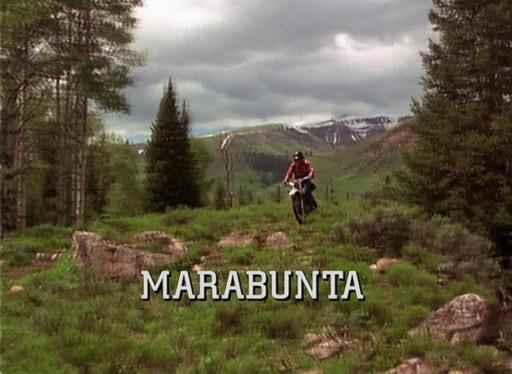 marabunta die killerameisen greifen an stream